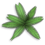 2d-palm-tree